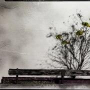 Degradated Shadows, Spring