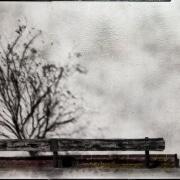 Degradated Shadows, Winter
