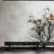 Degradated Shadows, Fall